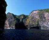 Pływanie z delfinami na Azorach - Wyspa Faial